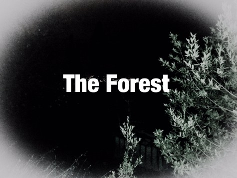 The Forest Movie Review : Opinion