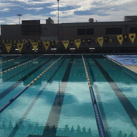 Nadando hacia los deportes de la primavera