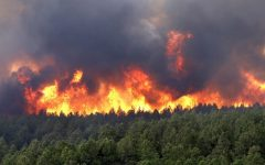 Hombre muere de incendios forestales