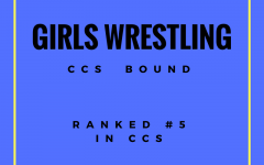 Lionesses Take to the Mats in CCS Wrestling Championships