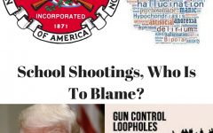 School Shootings, Who is to blame?