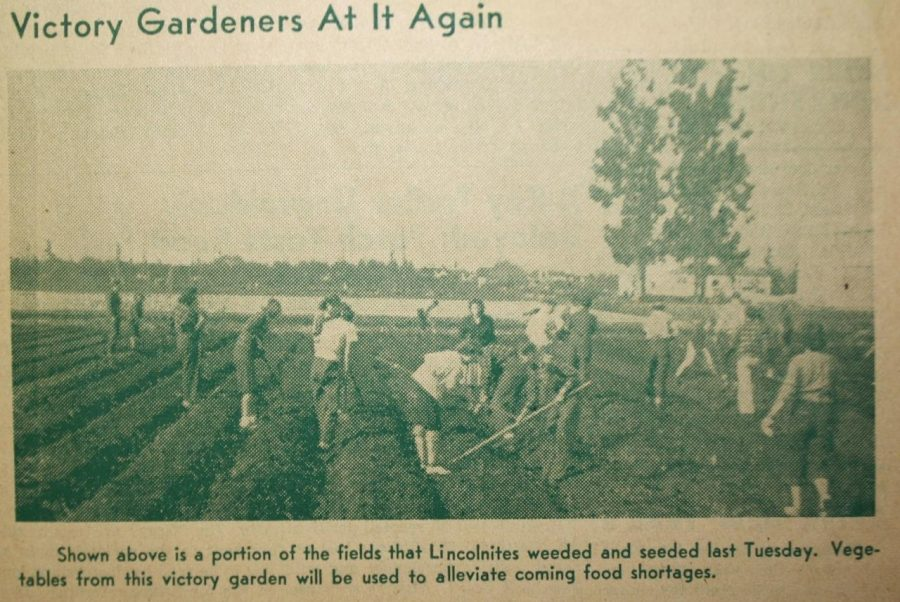 Abraham+Lincoln+High+School+students+farming+during+1942.+