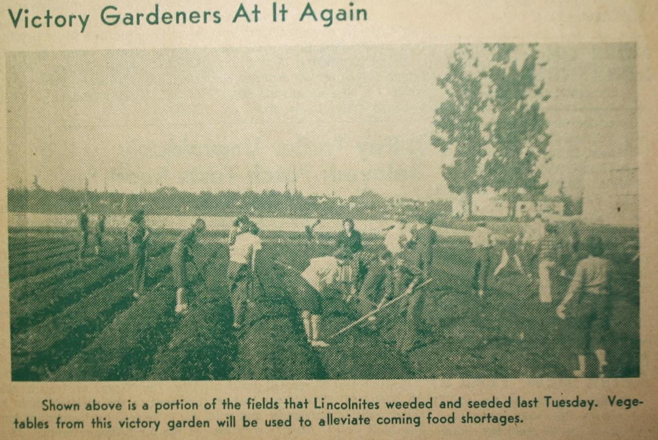Abraham Lincoln High School students farming during 1942.