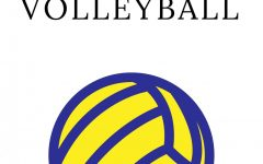 Girls Volleyball 2018-2019