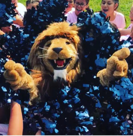 2018-2019 Cheer Team: The Heart of Lion Pride