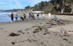 Marine Biology field trip