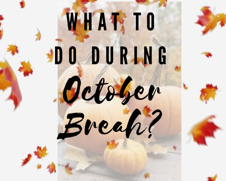 What To Do During October Break? (Tabatha Menten/Lincoln Lion Tales)