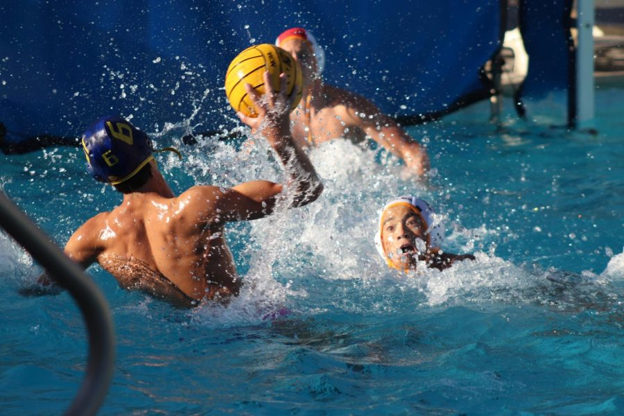 Jefferey Kenyon scoring a goal. He's currently the captain of the boys water polo team. September 19, 2019 at the Lincoln pool (Andrea Saldana/Lion Tales).