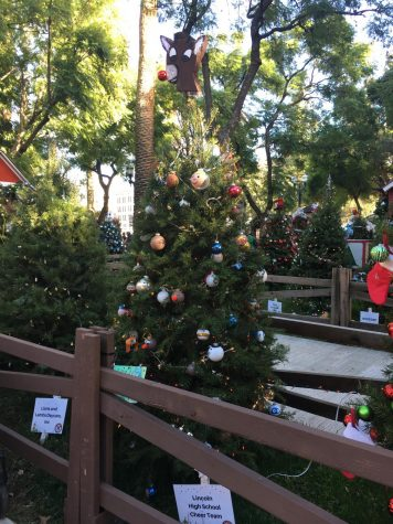 Christmas in the Park Overview 2019