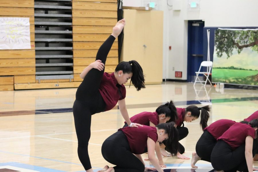 Saratoga+High+School+dance+team+performing+their+contemporary.+West+Coast+Elite+hosted+a+dance+competition+at+Valley+Christian+High+School.+January+18%2C+2020%2C+Located+at+Valley+Christian+High+School+%28Andrea+Saldana%29.