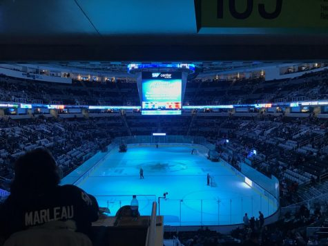 Op/Ed: My First SHARKS Game