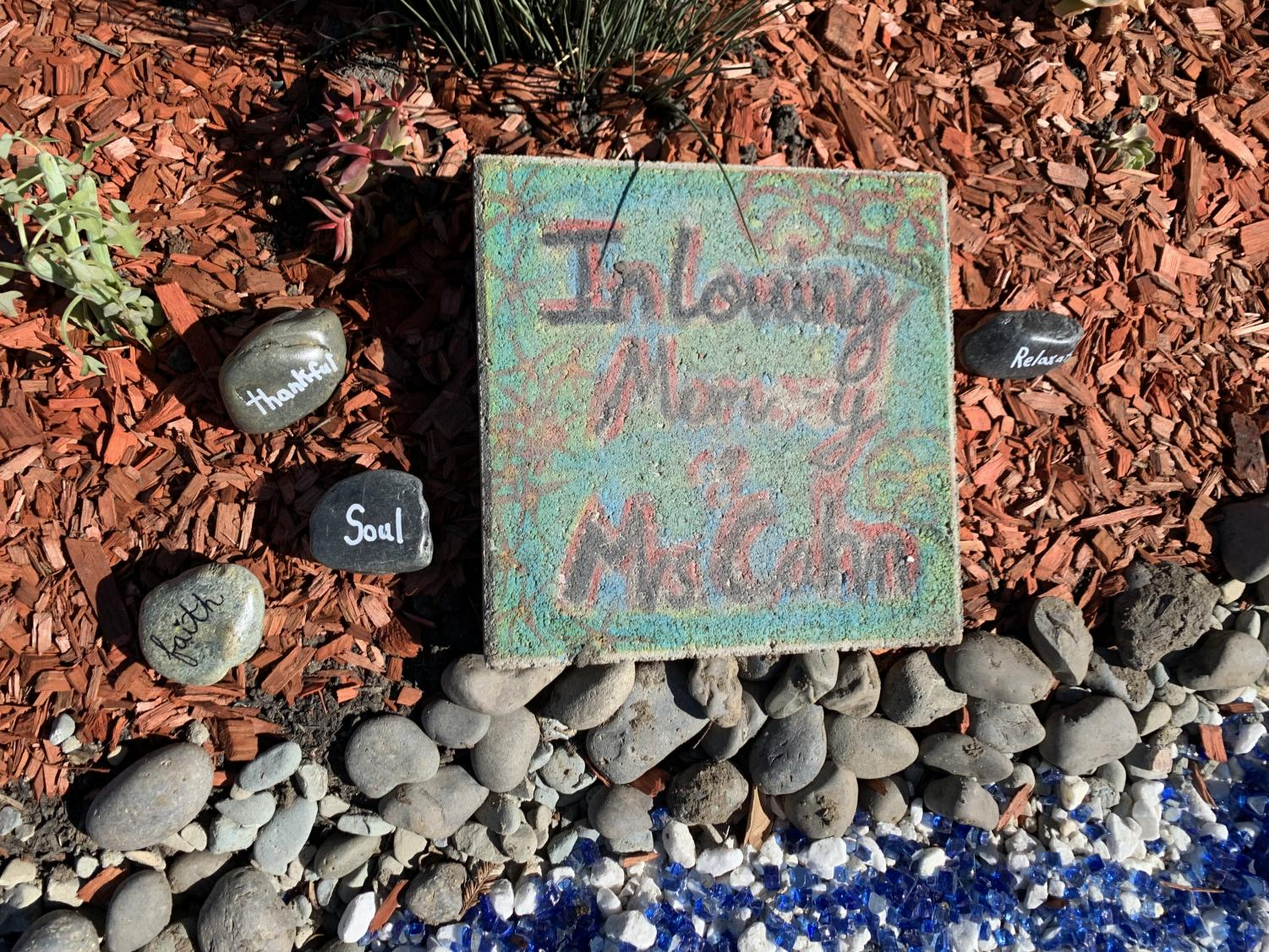 Stones with hopeful words on them in